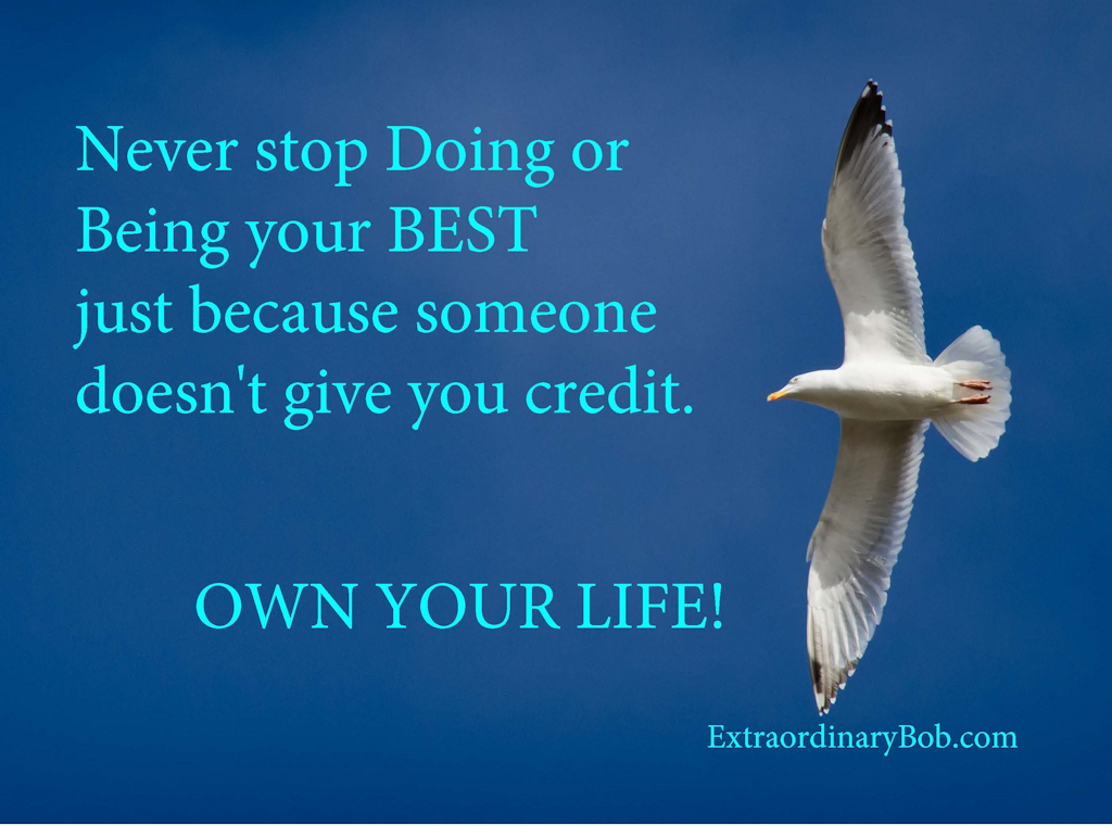 Extraordinary Bob Koehler-Own Your Life